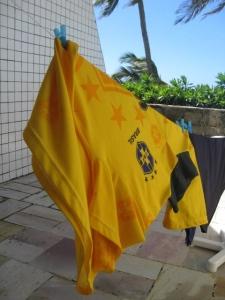 ブラジル洗濯