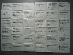 星野コピー壁3