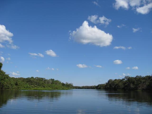 開高さんの川3