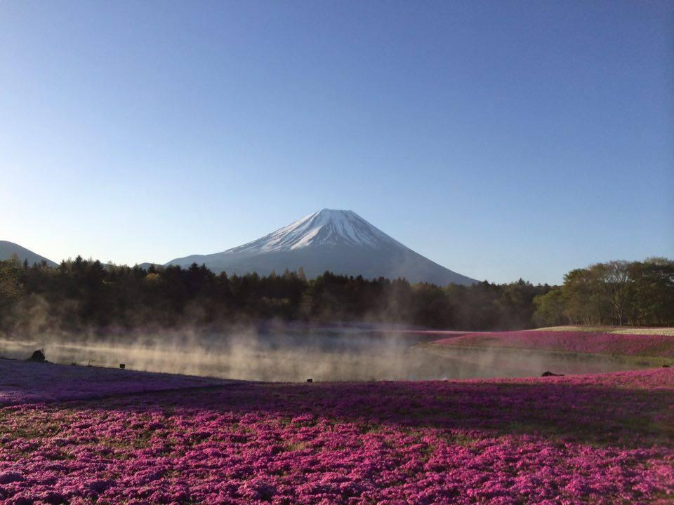 富士山笹井昭雄